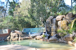 Billabong Zoo Waterfall
