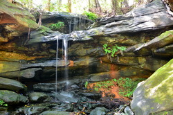Parsley Bay Waterfall